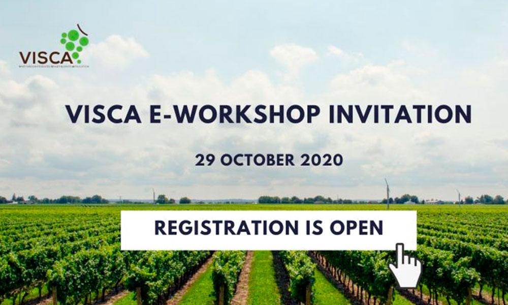 Visca e-workshop I 29 octubre 2020